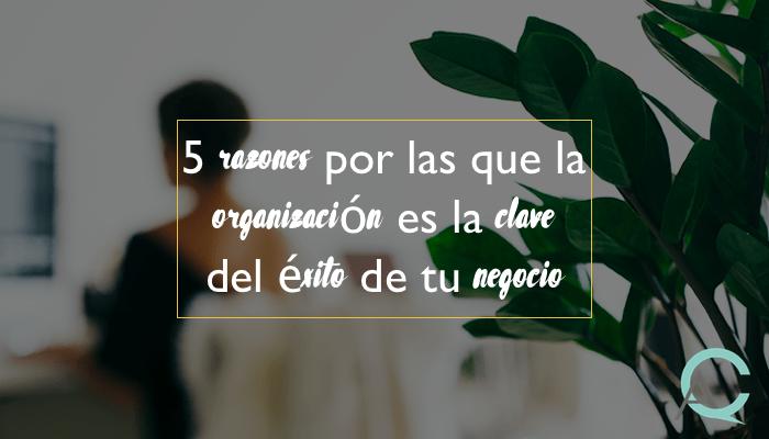 5 razones por las que la organización es la clave del éxito de tu negocio